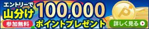 10万ポイント山分けキャンペーン