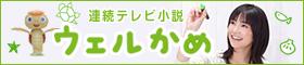 連続テレビ小説「ウェルかめ」特集
