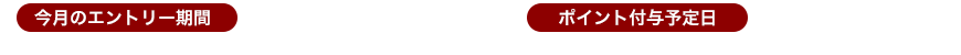 【今月のエントリー期間】2018年12月1日(土)0:00~2018年12月31日(月)23:59 【ポイント付与予定日】2019年2月15日(金)頃